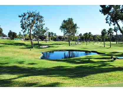 ( 4 ) Complimentary Rounds of Golf at Colina Park