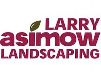 Landscaping services - one hour consultation