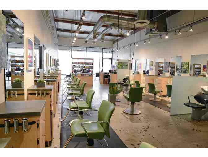 Cut & Color at Holiday Salon