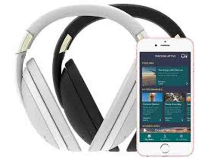 Kokoon Headphones in Grey