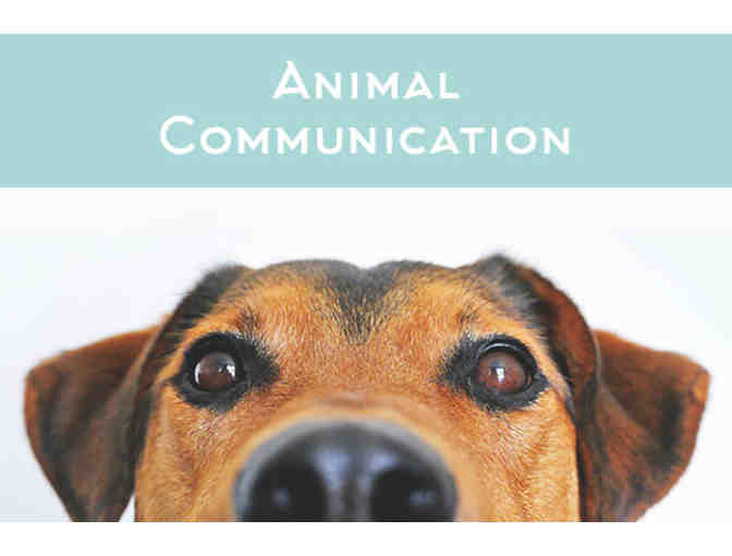 Gift Certificate For Animal Communication Services