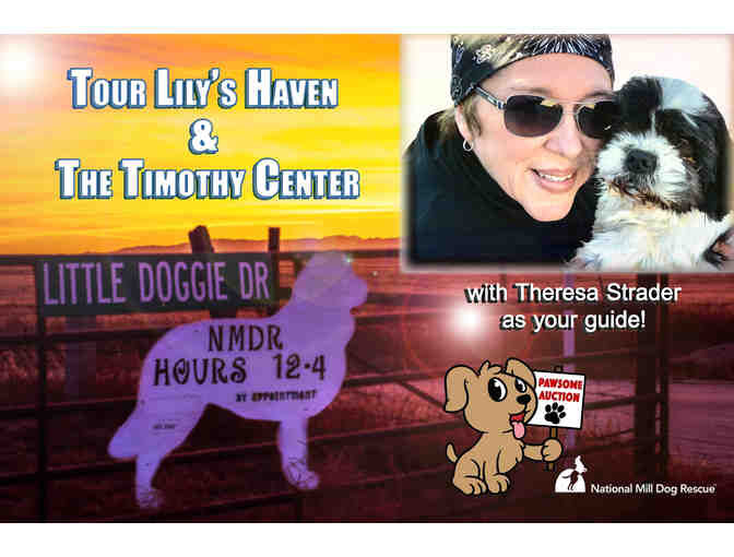 Private tour of Lily's Haven and the Timothy Center with meet and greet