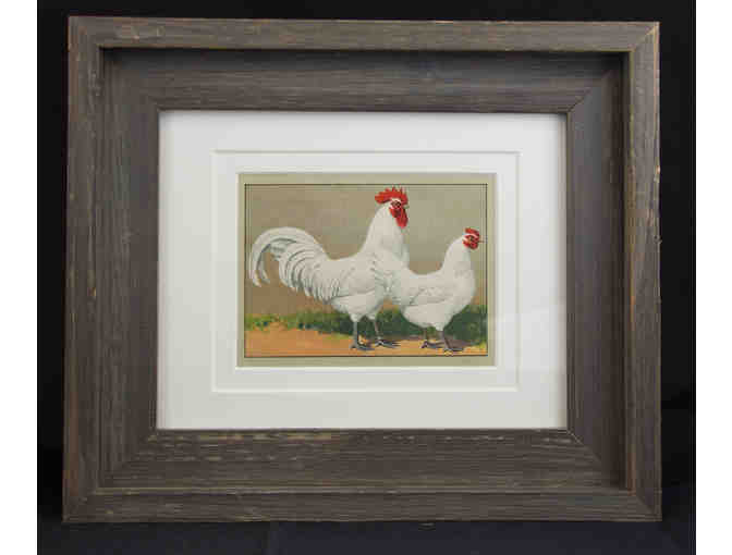 Antique German Chromolithograph Chicken Breed Prints, Set of Two Framed