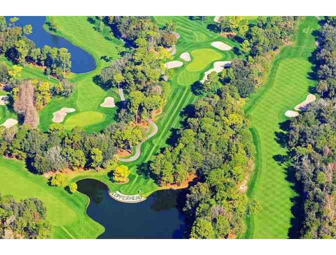 2 Nights in a Suite for 2 Adults & a Round of Golf for 2 at Innisbrook Resort in FL - Photo 3
