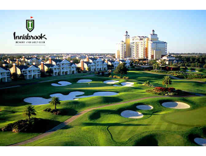 2 Nights in a Suite for 2 Adults & a Round of Golf for 2 at Innisbrook Resort in FL - Photo 4