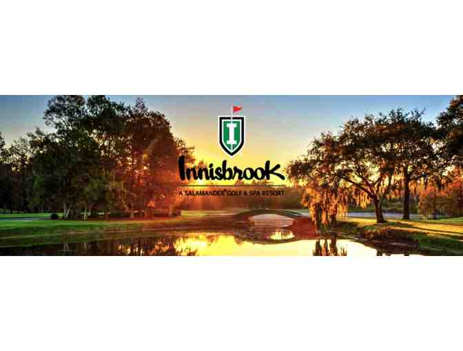 2 Nights in a Suite for 2 Adults & a Round of Golf for 2 at Innisbrook Resort in FL - Photo 5