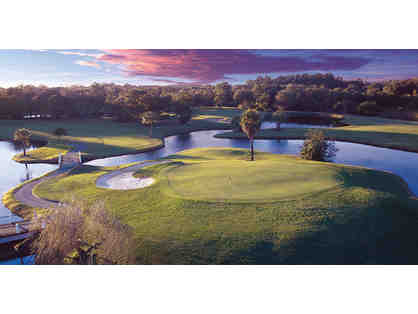 2 Nights in a Suite for 2 Adults & a Round of Golf for 2 at Innisbrook Resort in FL