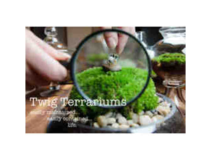 Terrariums for Two: Date Night Workshop