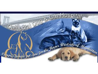 Cathedral Dog and Cat Hospital