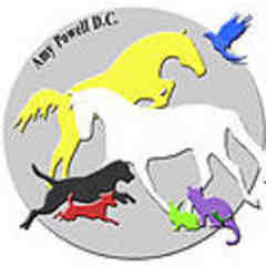 Animal Chiropractic - Amy Powell DC