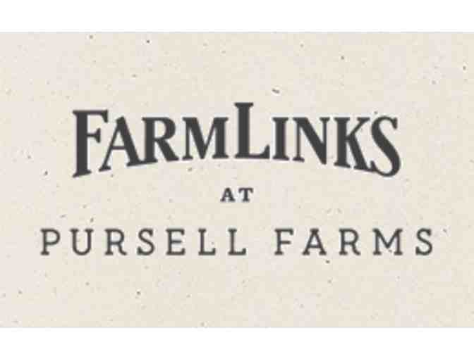 FarmLinks Golf Club - One foursome with carts and practice facility use
