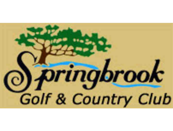 Springbrook Golf & Country Club - One foursome