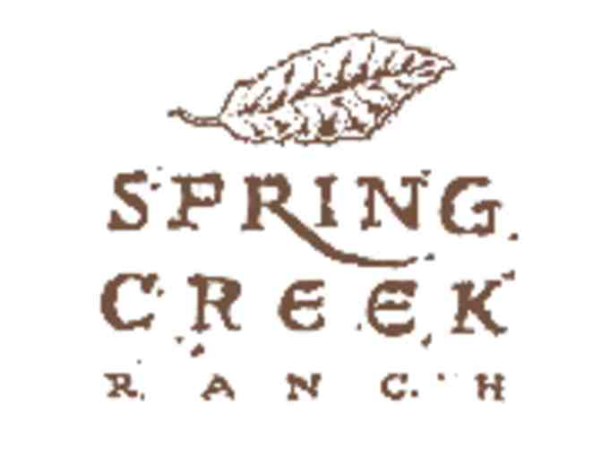 Spring Creek Ranch Golf Club - One foursome with carts