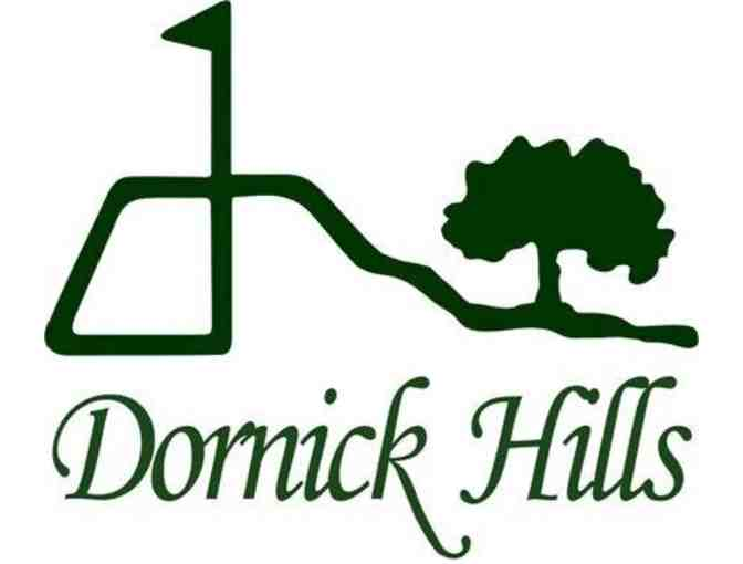 Dornick Hills Golf & Country Club - a foursome with carts and range balls
