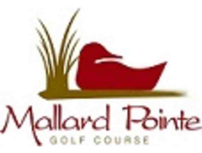 Mallard Pointe Golf Course - a foursome with carts