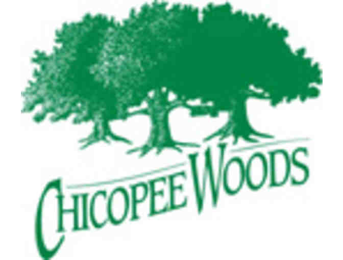 Chicopee Woods Golf  - Foursome with carts
