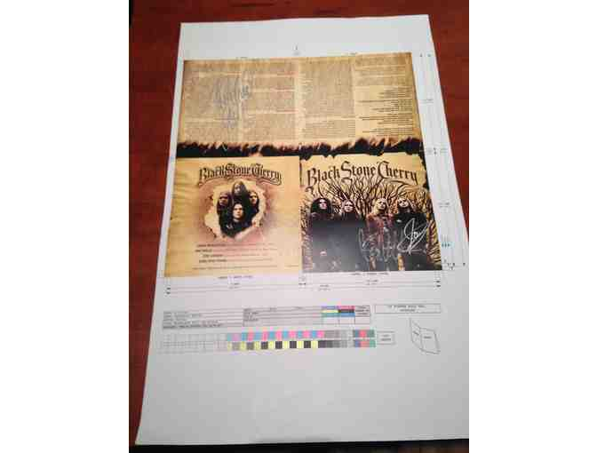 Black Stone Cherry Signed Test Print