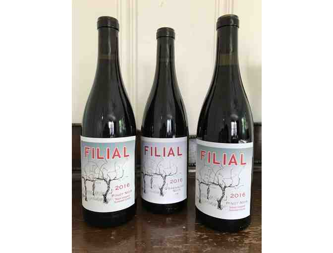 Trio of Wines from Filial Wines