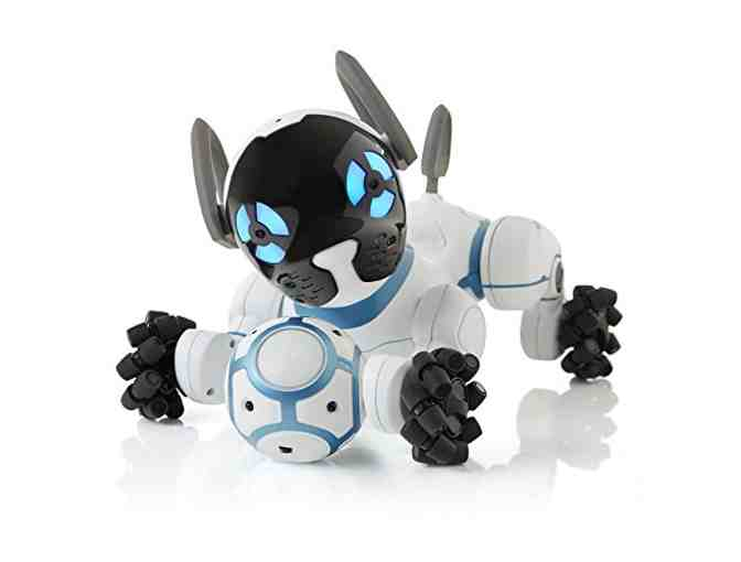 CHiP the Robot Dog!