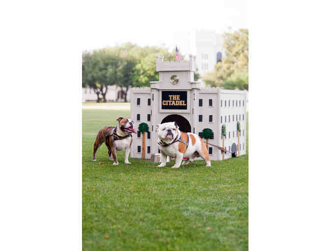 The Original Bulldog Doghouse