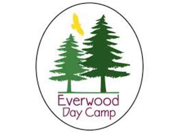 Everwood Day Camp - $325 Gift Certificate - Photo 1