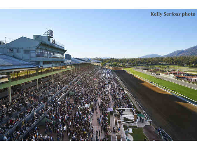 Day at the Races - Photo 1