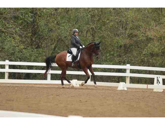 One day of dressage judging at licensed show with 'r' judge Jessie Ginsburg