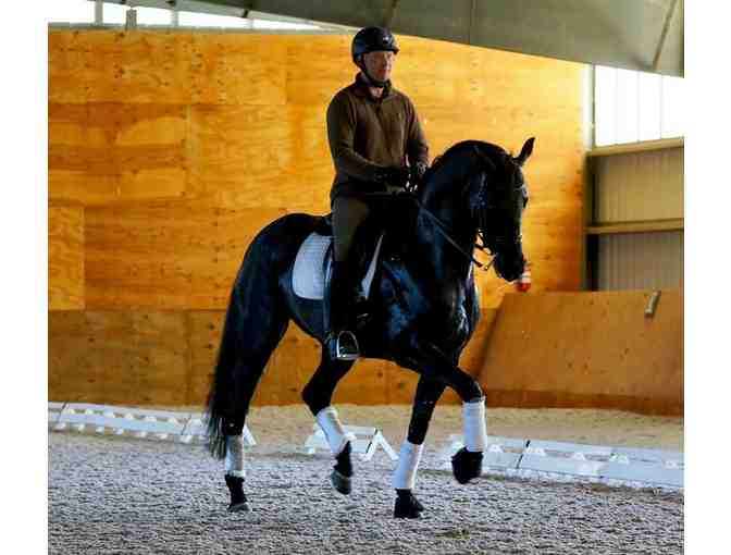 2 private dressage lessons with Wanja Gerlach