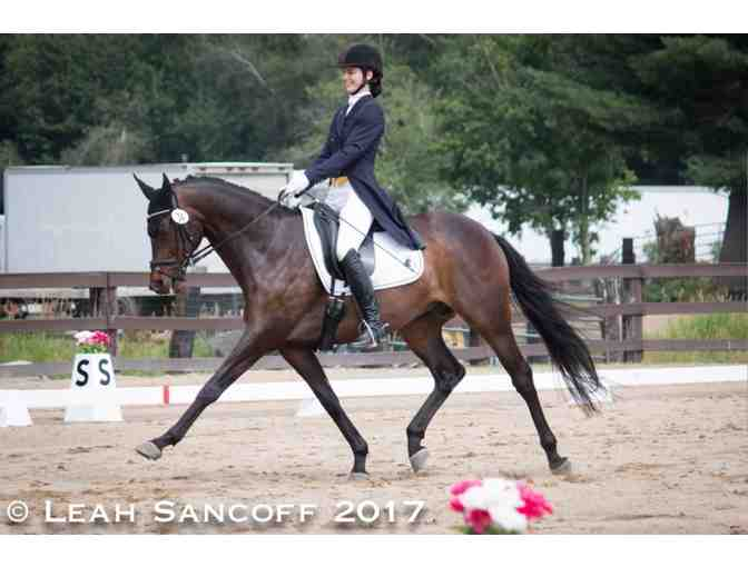 One private lesson with Bethany Larsen of Topline Dressage