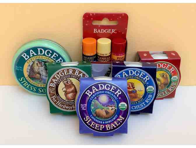 Badger Balm Gift Pack! - Photo 1