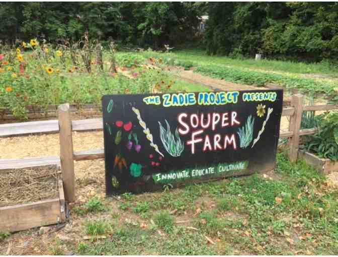 A Souper Insiders Experience: Lunch and Farm Tour with Souper Jenny and Farmer Jeff - Photo 3