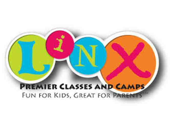 Linx Day Camp: $600 in Gift Certificates