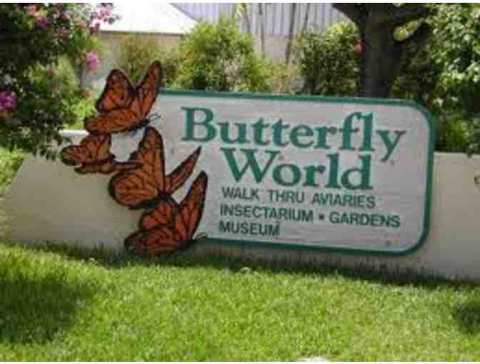 2 Tickets to Butterfly World - Photo 1