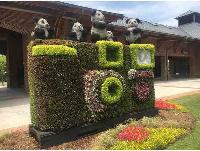 Getaway for Two to Greenwood, South Carolina and the South Carolina Festival of Flowers