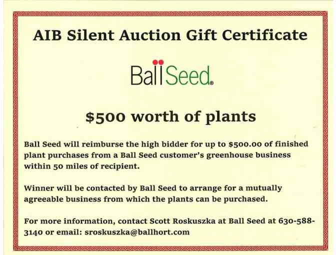 $500 Ball Seed Gift Certificate - Photo 2