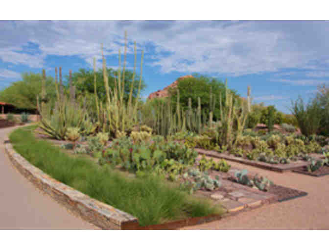Desert Botanical Garden- Two General Admission Passes - Photo 3