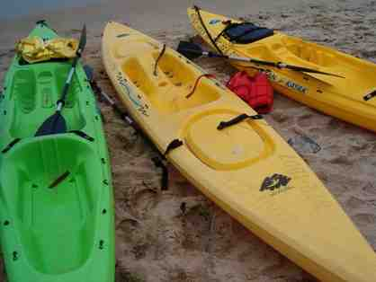 1/2 Day Double Kayak Rental ~ Kayak Connection