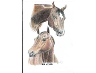 Custom horse or pet portrait