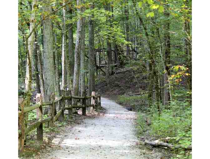 CINCINNATI NATURE CENTER'S ROWE WOODS - ONE-DAY FAMILY PASS - Photo 3