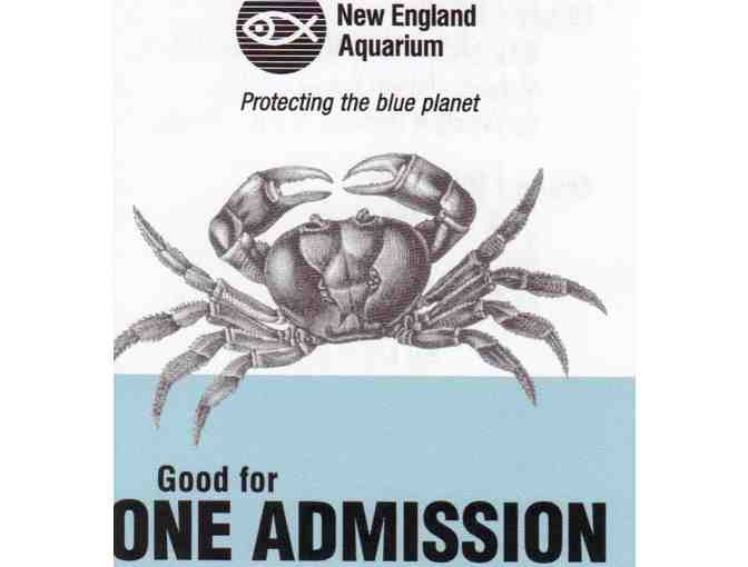 Four Passes to the New England Aquarium