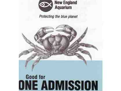 Two Passes to the New England Aquarium