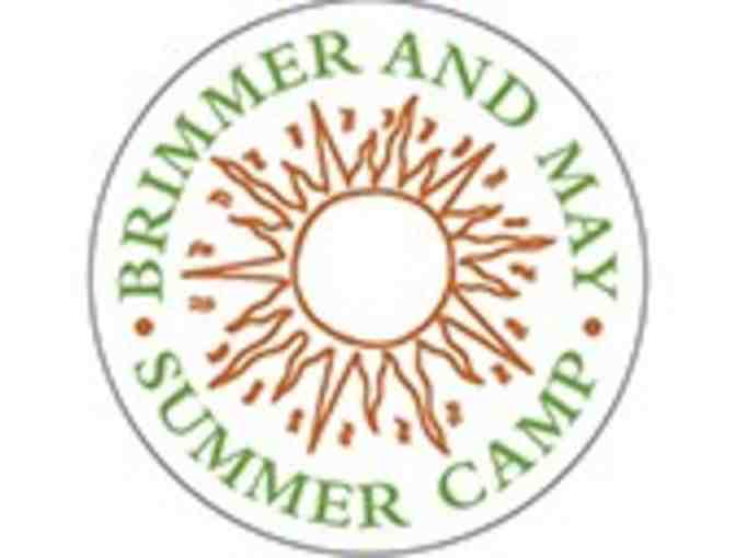 Brimmer and May 'Got Science' Camp- Session 1