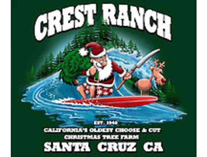 6 foot Christmas Tree from Crest Ranch Choose & Cut Tree Farm - Photo 1