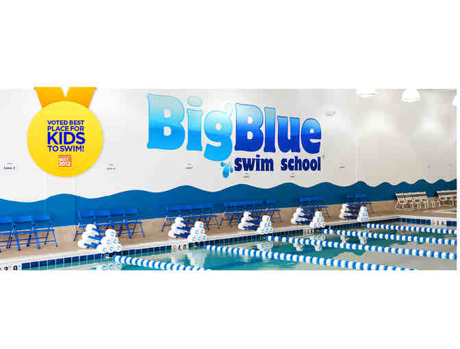 Big Blue Swim School:  Family Package of Swim Lessons