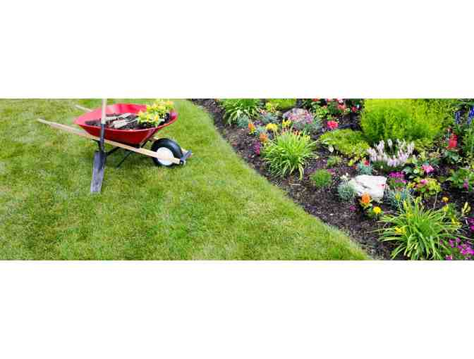 3 hours of landscaping work in Hamilton or Wenham From Landscaping by Dimitri - value $75