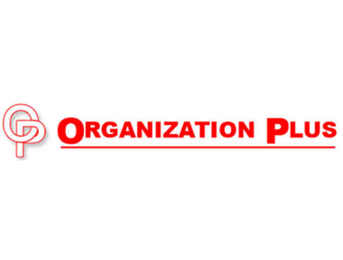 $100 toward organization services from Organization Plus