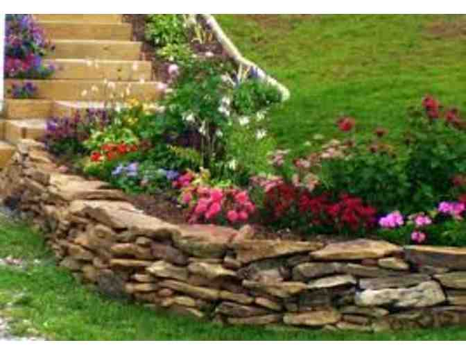 Landscape Architectural Services-licensed landscape architect Shane Lougee - Value $1000