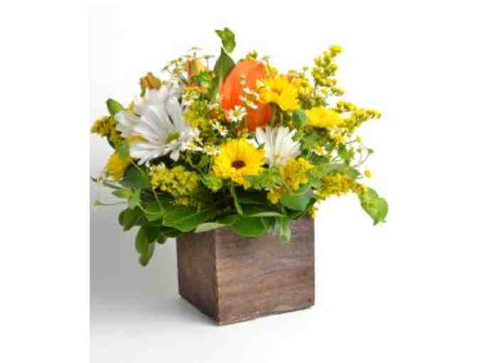 Bachmans Floral and Gifts $150 gift card - Photo 1