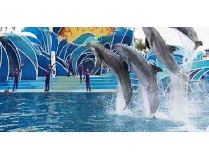 4 Admission Tickets to Seaworld San Diego - Photo 3