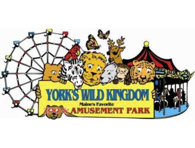 York's Wild Kingdom - Four VIP Admission Passes